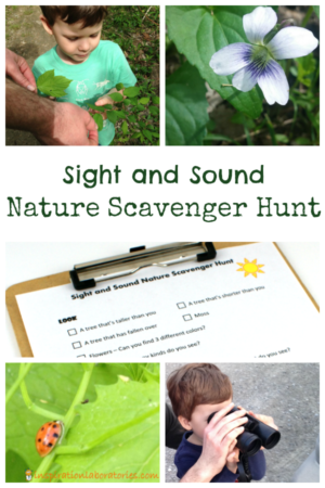 Outdoor Learning: Science 4