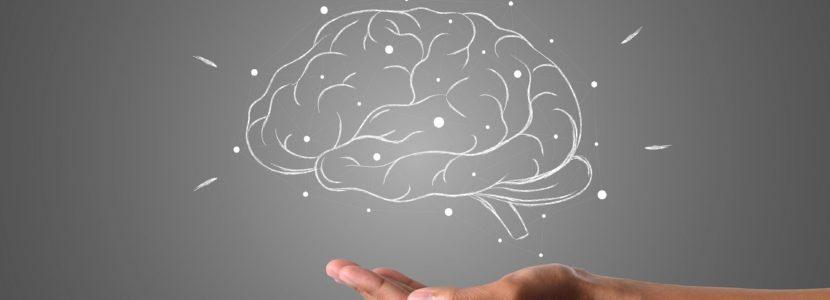 Brain Mind explanation for kids